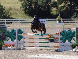 Horse Jumping Barns near Texas