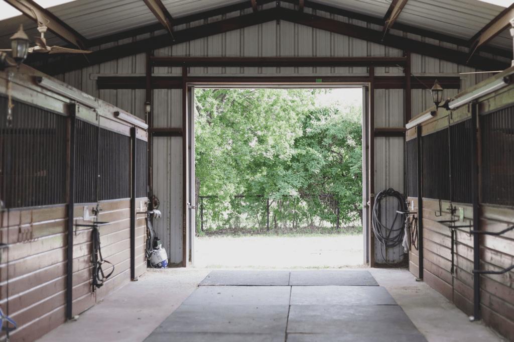 Full Training & Boarding Services Texas