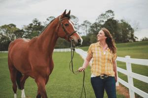 hunter/jumper show horse services