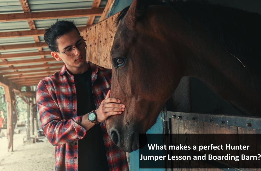 Hunter Jumper Lesson